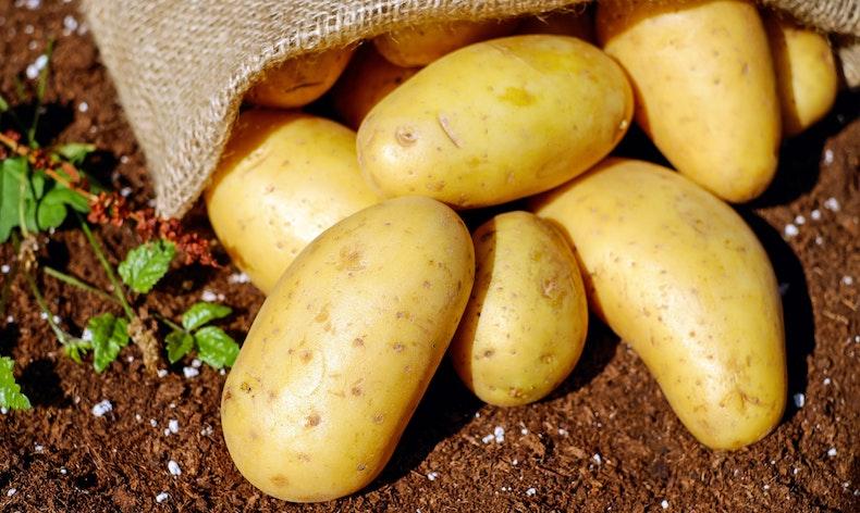 3 Astuces pour utiliser de la pomme de terre